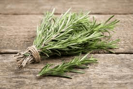 What Herbs Should You Grow?