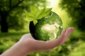 How Sustainable Is the Beauty Industry?