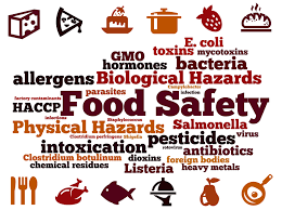 How Security Seals Enhance Food Safety